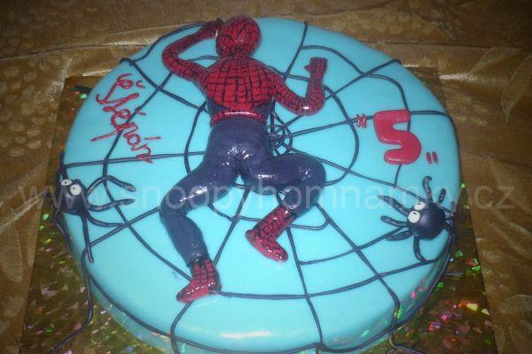 spiderman-s-1E0C7E011-19D6-6EEE-80C2-C2618A188851.jpg