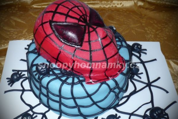 spidermaska2A47E4573-0DC5-0D8B-A602-E2731124B46C.jpg