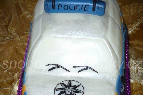 policie-295E62A34-E320-6824-E4F8-F65242BFA868.jpg