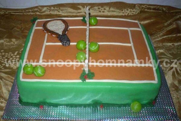 tenis6A331252-CEDA-47E2-7CB4-4505E2624C91.jpg